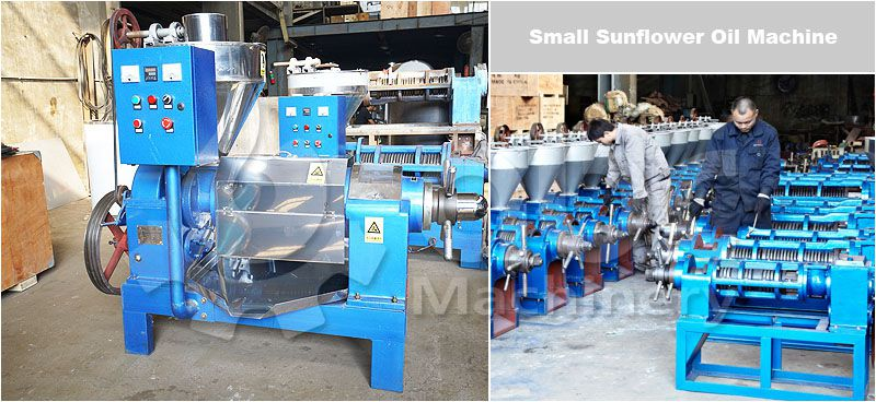 low cost small sunflower oil production machine for sale