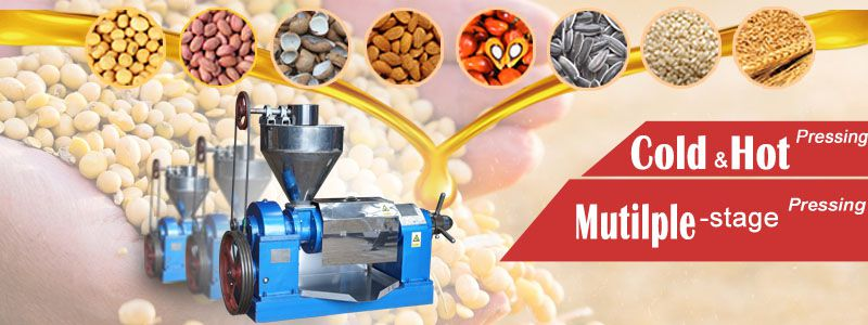 soybean oil extraction machine at factory price