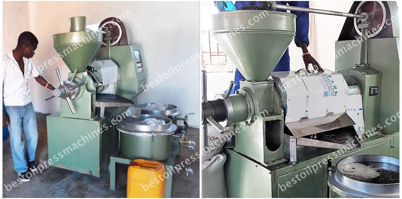 Integrated Sunflower Oil Pressing Machine Working in Malawi