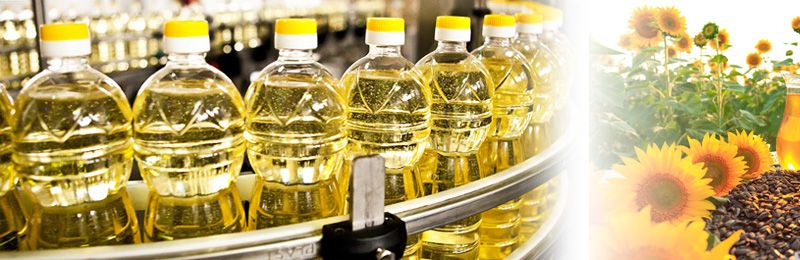 south africa sunflower oil production