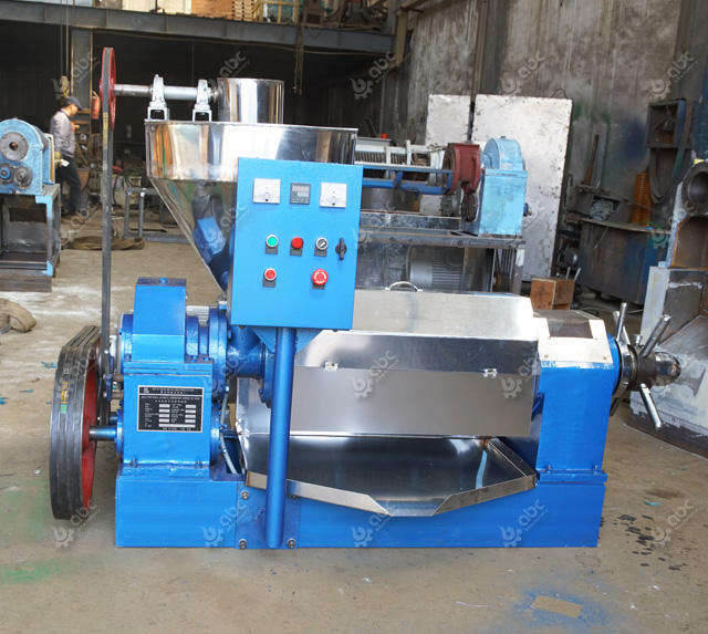 sunflower seed oil press machine for sales