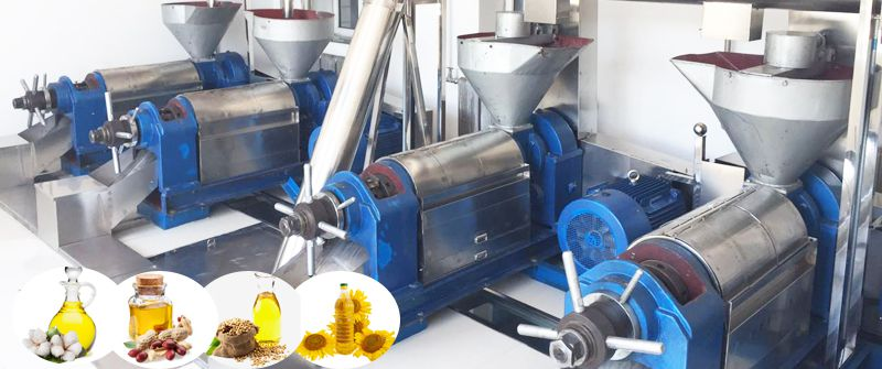 vegetable oil extraction machinery for sales
