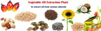 Small Vegetable Oil Extraction Plant Process & Equipment